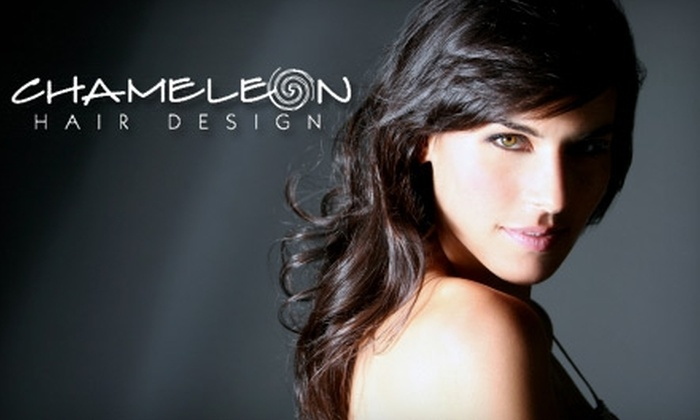 Chameleon Hair Design - Sioux Falls: $54 for Haircut, Style, Color, and Choice of Lip or Eyebrow Waxing at Chameleon Hair Design