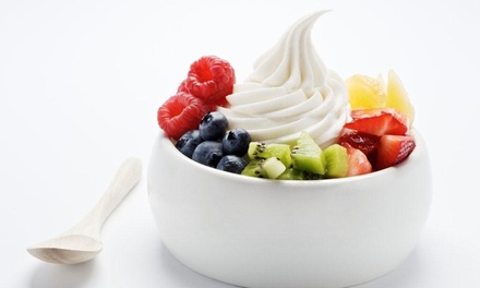Four- or Eight-Visit Punchcard for Frozen Yogurt at Fiji Yogurt (50% Off)