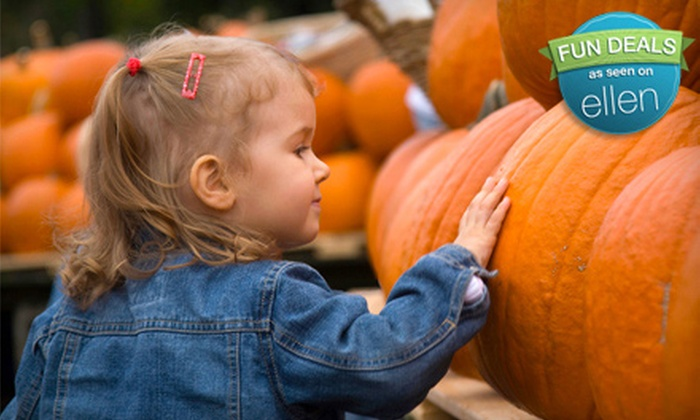 Stokoe Farm - Scottsville: $8 for a Pumpkin-Patch and Harvest-Festival Outing for Two on October 29 or 30 at Stokoe Farm in Scottsville (Up to $16 Value)