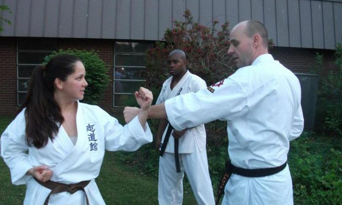 Traditional Okinawan Karate - Springfield: Four Weeks of Unlimited Karate Classes at Traditional Okinawan Karate (60% Off)