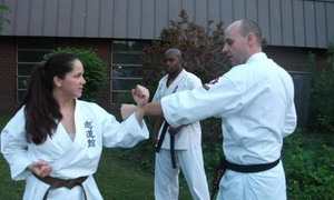 Traditional Okinawan Karate: Four Weeks of Unlimited Karate Classes at Traditional Okinawan Karate (60% Off)