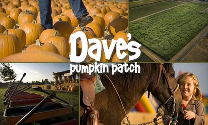 Dave's Pumpkin Patch - Southport: $25 for Four Cornival Wrist Bands and Two Children's Pony Rides at Dave's Pumpkin Patch
