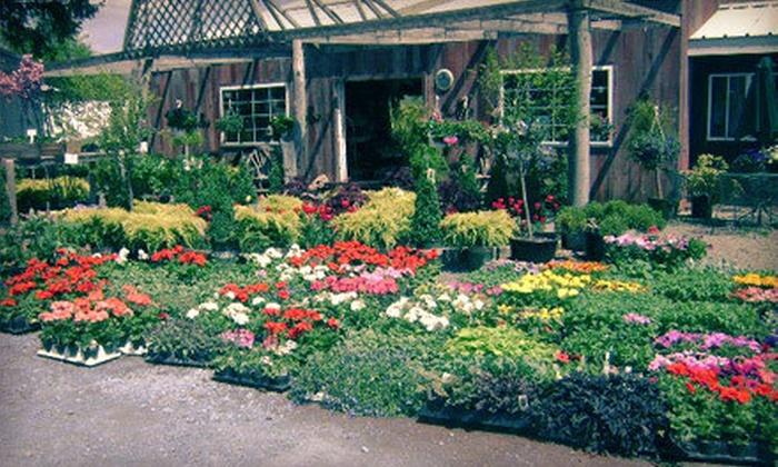 Salmon Creek Nursery - Maplewood: $15 for $30 Worth of Plants, Flowers, and Gardening Supplies at Salmon Creek Nursery in Brockport