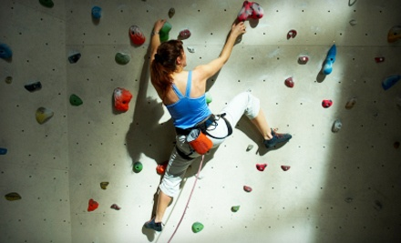 5 Climbing Passes and 5 Shoe and Harness Rentals - Nevada Climbing Centers in Las Vegas