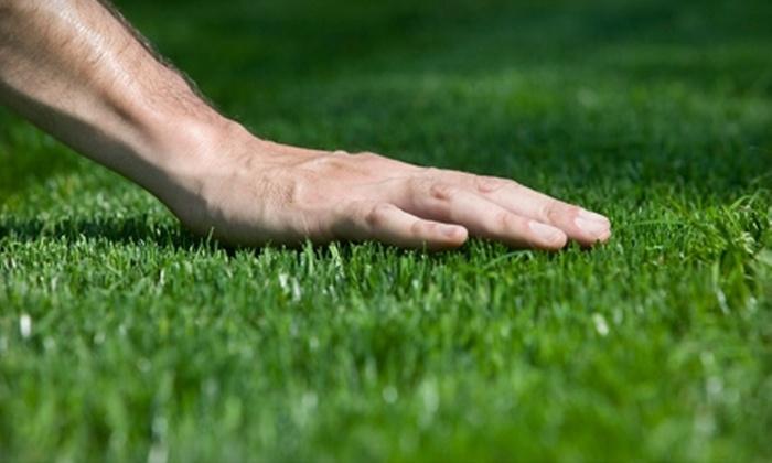 Fresh Cut Lawn - Saskatoon: $30 for a Lawn Aeration from Fresh Cut Lawn