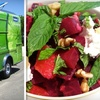 $5 for Gourmet Fare at The Lime Truck