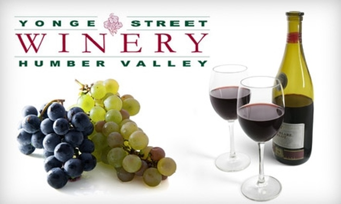 Yonge Street Winery - Multiple Locations: $65 for a Winemaking Experience from Yonge Street Winery in Aurora or Humber Valley Winery in Bolton ($130 Value)
