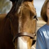 60% Off Introduction to Horses Class in Sandown