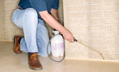 image for One Interior and Exterior Bug-Spray Application from Fortified Pest Management (Up to 66% Off)