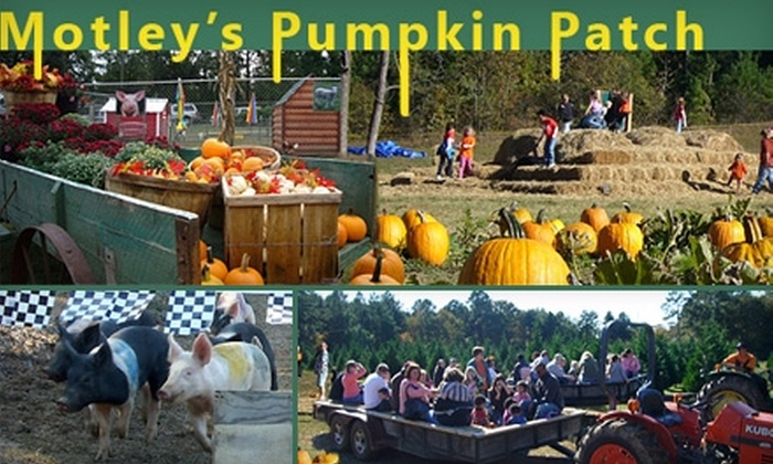 Directions and map to motley's pumpkin patch and christmas trees.