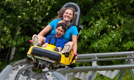 Mountain Adventure Park Pass for Two or Four at Cranmore Mountain (Up to 30% Off)