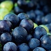 55% Off Tasting and Wine in Stanardsville