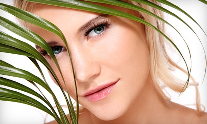 Fringe Hair & Body Salon - Harbor Cove: One or Three 60-Minute Microdermabrasion Treatments at Fringe Hair & Body Salon in Mooresville (Up to 51% Off)