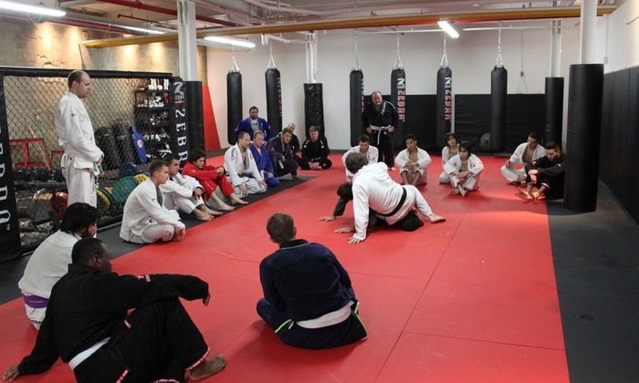 Primal MMA Academy  - Leslieville: One Month of MMA or Kids' Jiu Jitsu Classes at Primal MMA Academy (Up to 67% Off). Three Options Available.