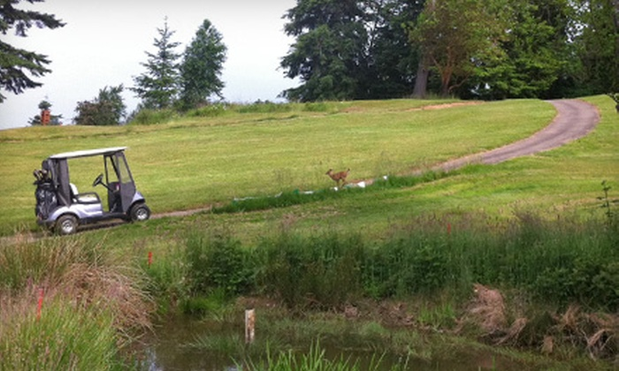 Skyline Golf Course - Cathlamet: 18-Hole Golf Outing with Driving-Range Balls and Pro-Shop Discount for One or Two at Skyline Golf Course in Cathlamet (57% Off)