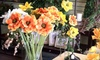 Blossom Designs - Chattanooga: $25 for $50 Worth of Flowers and Gifts from Blossom Designs in Hixson
