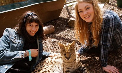 image for Animal Keeper Experience for Two or Four at Hoo Farm Animal Encounters (Up to 67% Off)
