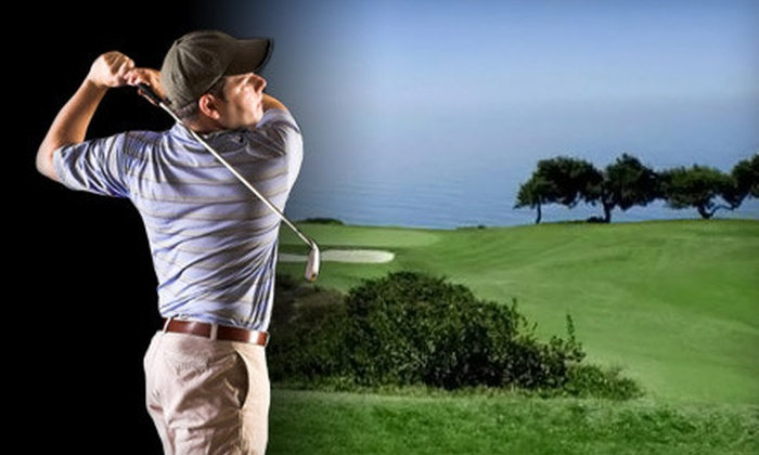 Back Nine HD Golf Inc. - Meadowvale North Business Park: $45 for a Golf-Simulator Package at Back Nine HD Golf Inc. in Mississauga (Up to $130 Value)