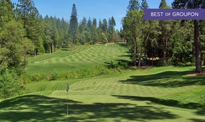 Apple Mountain Golf Resort: 18-Hole Round of Golf and Cart for Two at Apple Mountain Golf Resort (Up to 44% Off). Two Options Available.