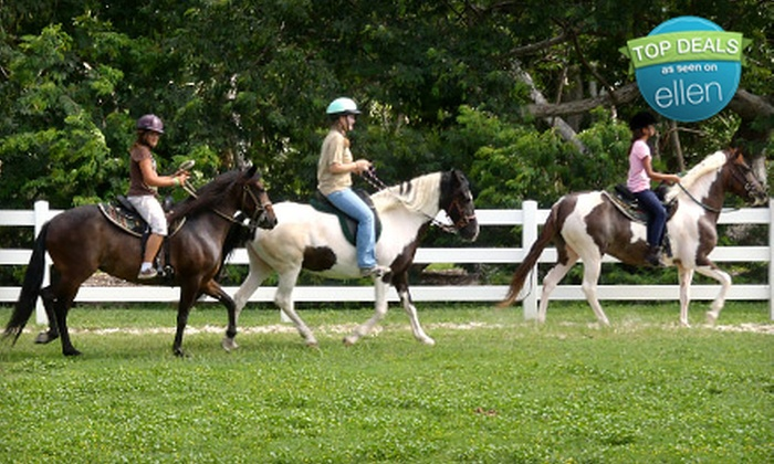 White Star Farms - Homestead: One or Five Private Horseback-Riding Lessons at White Star Farms in Homestead (Up to 51% Off)