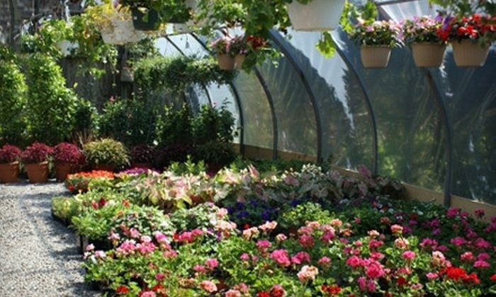 A. Thomas & Sons - Milton: $20 for $40 Worth of Plants and Garden-Center Products at A. Thomas & Sons in Milton