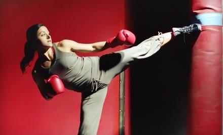 U.S. Elite Martial Arts & Fitness Center - U.S. Elite Martial Arts & Fitness Center in Arlington Heights