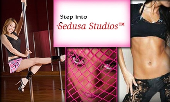 Sedusa Studios - San Jose: $10 for an Intro to Sensual Dance and Pole Dance Class or an Intro to the Pussycat Workout Dance Class at Sedusa Studios ($25 Value)