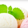Yogurt Plus - Fair Lawn: $5 for $10 Worth of Treats at Yogurt Plus in Fair Lawn