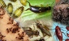 Harper Pest Control, Inc. - Chinatown: $79 for a Complete Home-Pest-Prevention Package from Harper Pest Control