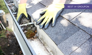 Friendly Giant Window and Gutter Cleaning: Gutter Cleaning for Up to 200 or 300 Feet from Friendly Giant Window and Gutter Cleaning (Up to 50% Off)