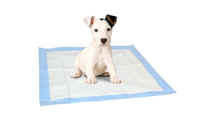 Dog House Breaking Pads