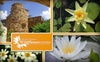 Lady Bird Johnson Wildflower Center - Circle C Ranch: $32 for a One-Year Family Membership to the Lady Bird Johnson Wildflower Center ($65 Value)