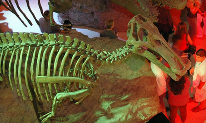 Houston Museum of Natural Science - Houston: $29 for Two Tickets to the Spirits & Skeletons Halloween Mixer on October 28 at the Houston Museum of Natural Science ($60 Value)