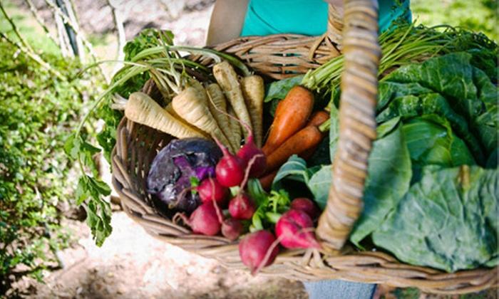 Tilian Farm, Honest Eats Farm, & Meristem Farm - Multiple Locations: $99 for One-Month CSA Membership in May, June, July, or August from Tilian, Meristem, or Honest Eats Farm ($200 Value)