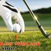 Half Off Golf Gear at The Broken Niblick Golf Shop