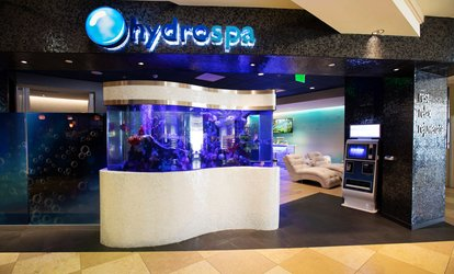 image for Four Hours of Unlimited Facility Use at The HydroSpa (Up to 70% Off). Two Options Available.