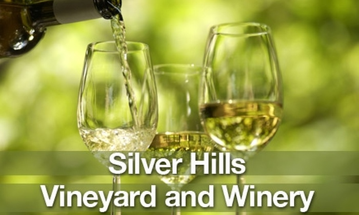 Back to the Country Wine and Music Festival - Silver Creek: $7 for a Ticket to the Back to the Country Wine and Music Festival on June 26 at Silver Hills Vineyards and Winery ($15 Value)