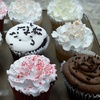 Up to 53% Off Cupcakes in Fulton