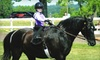Linden Hill Stables - Kearney: $50 for Three Private Horse-Riding Lessons at Linden Hill Stables in Kearney ($105 Value)