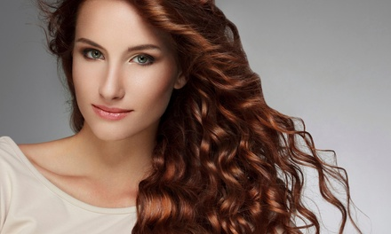 Haircut with Choice of Color and Style or Full Highlights at Hair FX Studio (Up to 38% Off)