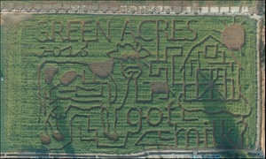 Up to 39% Off at Green Acres Dairy Pumpkin Patch And Corn Maze at Green Acres Dairy Pumpkin Patch And Corn Maze, plus 6.0% Cash Back from Ebates.