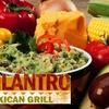 $5 for Burritos & More at Cilantro