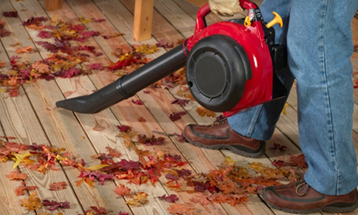 Cut Above Lawn Care - Pettigru Street Area: Leaf Blowing or Gutter Cleaning for a Single- or Two-Story Home from Cut Above Lawn Care (Up to 51% Off)