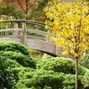 Up to 53% Off at Forth Worth Botanic Garden