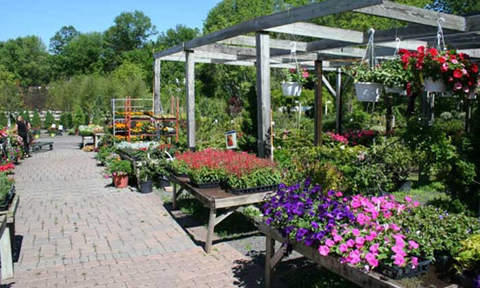 Kirshner's Garden Center  - Wrightstown: $25 for $50 Worth of Plants and Gardening Supplies at Kirshner's Garden Center