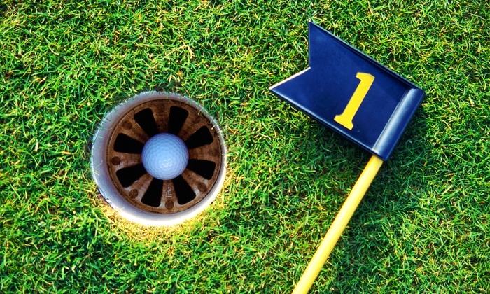 Fun Fore All - Fun Fore All: Two-Hour Fun Pass for One, Two, or Four at Fun Fore All (Up to 39% Off)