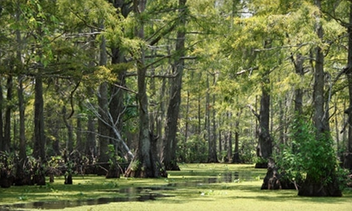 Cajun Pride Tours - La Place: $22 for a Swamp Boat Tour for Two from Cajun Pride Tours (Up to $48 Value)