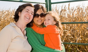 Westhaven Farm: $23 for a Family-Friendly Hayride and Corn Maze for Four at Westhaven Farm ($38 Value)