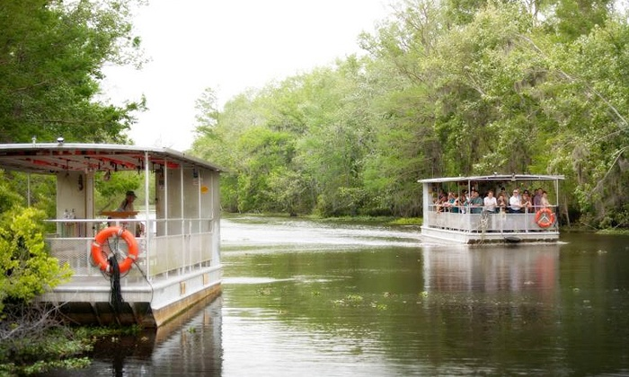 Ultimate Swamp Adventures - Ultimate Swamp Adventures: Weekday or Weekend Swamp Tour for One, Two, or Four from Ultimate Swamp Adventures (Up to 41% Off)