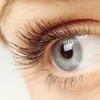 Up to 51% Off Lash Extensions at Ooh So Pretty Salon and Spa